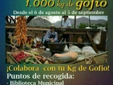 La carroza de Valsequillo ofrendará a la Virgen del Pino una tonelada de gofio durante la Romería de Teror