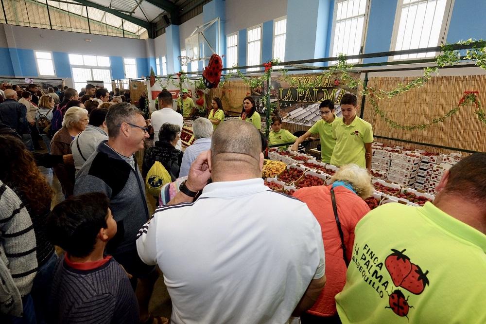 Feria de la fresa 2018