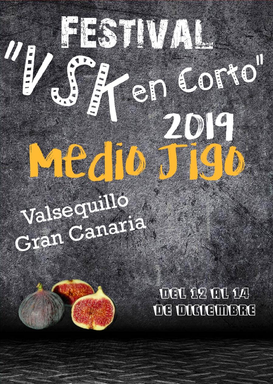 VSK en Corto 2019